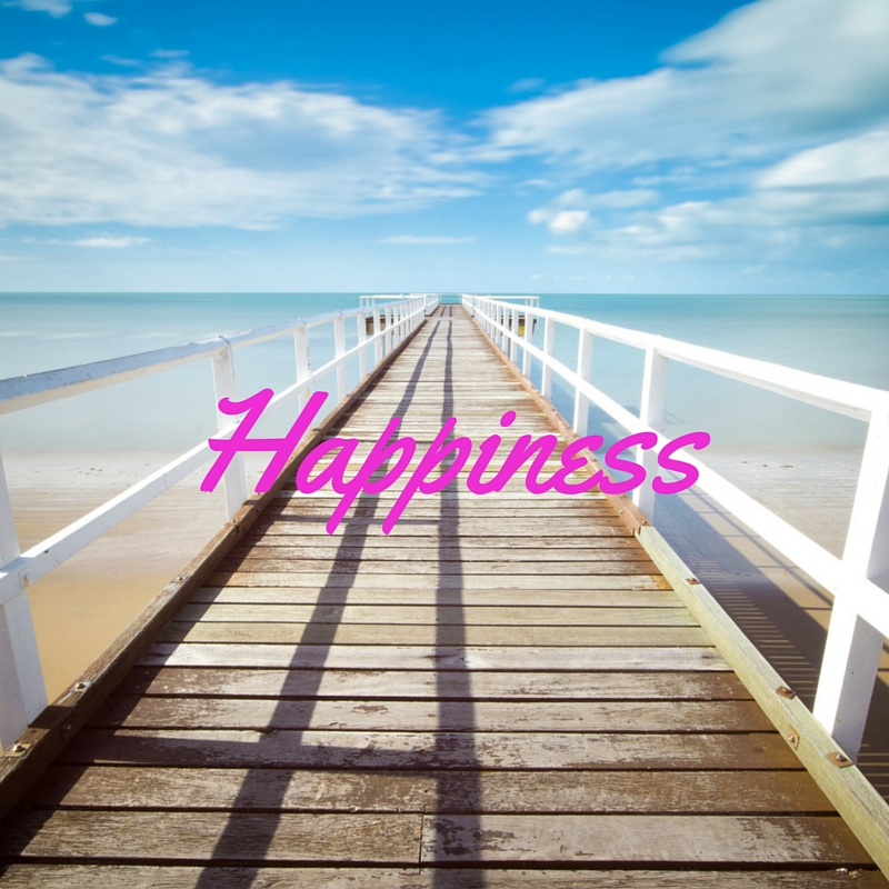 Happiness is the True Meaning of Life