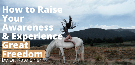 How to Raise Your Awareness & Experience Great Freedom in Your Life